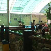 Photo taken at Parque Recreativo Guchachi Iguana by Luis Fernando on 4/7/2013