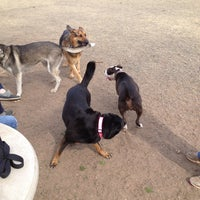 Photo taken at Carmichael Dog Park by Joel W. on 3/3/2013