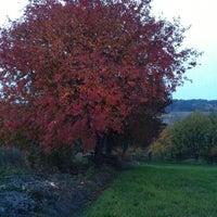 Foto tomada en Зелена Гора por Inga S. el 10/13/2013