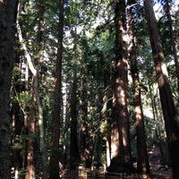 Photo taken at Pfeiffer Big Sur State Park by deb s. on 11/20/2012