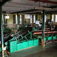 Photo taken at Glenloch Tea Factory by Umka on 10/15/2012