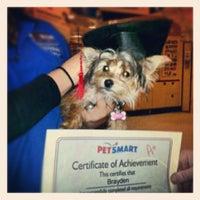 12/13/2012にJessicaがPetSmartで撮った写真
