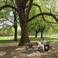5/8/2013にJeffrey H.がTrinity Bellwoods Parkで撮った写真