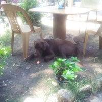 Foto scattata a Shanti Garden da jam s. il 7/16/2013