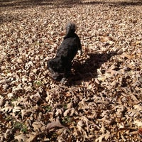 Photo taken at Stoney Creek Dog Park by Kelly on 11/17/2012