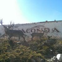 Photo taken at Anaconda by Adriane J. on 3/10/2015