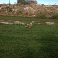 Photo taken at Rose Park Golf Course by Shelly on 9/22/2013