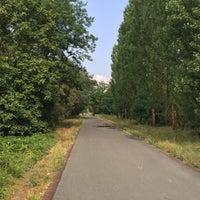 Photo taken at Hans-Baluschek-Park by Cornell P. on 8/19/2015