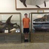 Photo taken at SDSM&T Museum of Geology by Mark G. on 6/29/2016