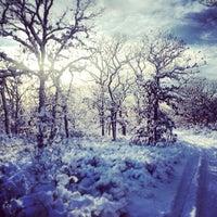 Foto scattata a Manuel F. Correllus State Forest da Graham S. il 2/17/2014