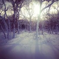 Foto scattata a Manuel F. Correllus State Forest da Graham S. il 2/9/2013