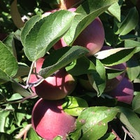 Photo taken at Applecrest Farm Orchards by DC P. on 9/29/2013
