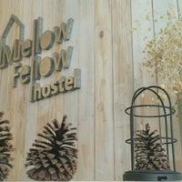 2/10/2017 tarihinde Yulia A.ziyaretçi tarafından Mellow Fellow Hostel'de çekilen fotoğraf