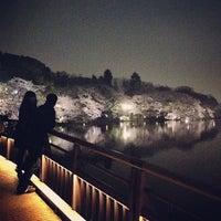 Foto scattata a Inokashira Park da orin il 3/24/2013