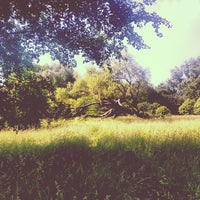 Photo taken at Parc Scheutbospark by Fanny B. on 6/8/2014
