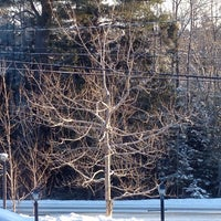 Photo taken at Kinsac Road by Candace M. on 2/28/2014