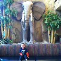 Photo taken at Elephant Bar Restaurant by Elizabeth C. on 11/30/2012