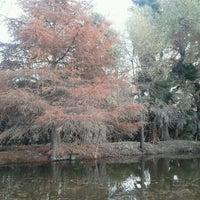 Photo taken at La Constancia, Nombre De Dios by Mario Giovanni H. on 12/28/2012
