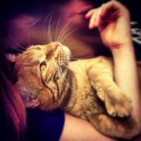 Photo taken at Animal Humane Society by Fernando F. on 6/9/2013