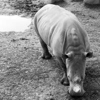 Photo taken at Toronto Zoo by Alex on 9/23/2013