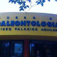 Photo taken at Museo de Paleontología by Alex on 5/23/2013