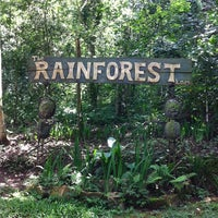 Photo taken at rain forest by Eda on 6/18/2014