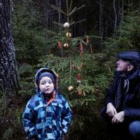 Photo taken at Meza vidu Piebalga by Gints S. on 12/23/2013