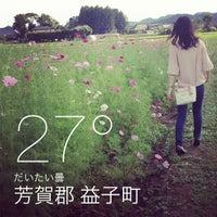 Photo taken at ましこ花まつり by Ayumi O. on 10/7/2013