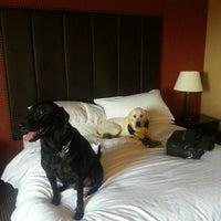 Photo taken at Sheraton Silver Spring Hotel by Drew V. on 10/20/2012
