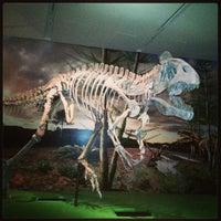 Photo taken at Royal Ontario Museum by Nancy T. on 3/16/2013