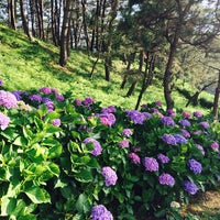 Photo taken at 飯森山公園 by tubaki33 on 6/30/2014