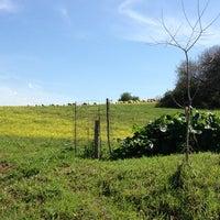 4/7/2013にGiovanni M.がParco Regionale dell'Appia Anticaで撮った写真