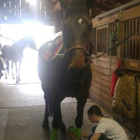 Photo taken at Rockleigh Equestrian Centre by Edwin J. on 3/19/2016