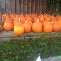 Photo taken at Beans & Greens Farmstand by Kristen S. on 10/11/2014