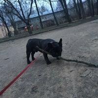 Photo taken at Арчи делает песикотов by Annette 🐱 on 4/13/2015