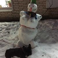 Photo taken at Арчи делает песикотов by Annette 🐱 on 1/14/2015