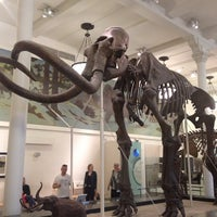 Foto tomada en Museo Americano de Historia Natural por Rick D. el 5/17/2013