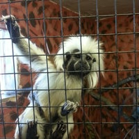 Photo taken at Noah's Ark Zoo Farm by Mark L. on 2/2/2013