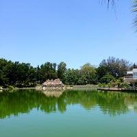 Photo taken at Atracciones El Lago by Johnny P. on 6/7/2013