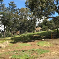 Photo taken at African Elephants by Norm Y. on 3/4/2018