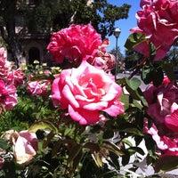 Photo taken at Santa Clara University by David W. on 7/5/2013