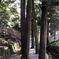 12/27/2017にGraceが箱根旧街道 杉並木で撮った写真
