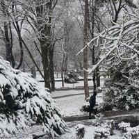 1/14/2018 tarihinde Hunyadi L.ziyaretçi tarafından Városmajor'de çekilen fotoğraf