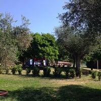 Photo taken at Parco Comunale Trevignano by So-fija on 6/10/2014