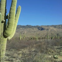 Photo taken at Saguaro National Park by Dante W. on 3/6/2013