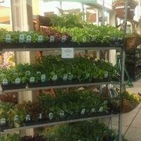 Photo taken at New Seasons Market by Ela M. on 3/30/2013