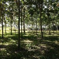 Photo taken at เหมืองคุณปู่ ธนา by Michele M. on 12/30/2012