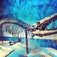 Photo taken at Perot Museum of Nature and Science by Keny D. on 1/28/2013