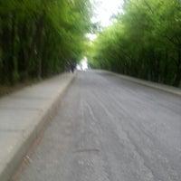 5/9/2013 tarihinde İLY 5.ziyaretçi tarafından İTÜ Ağaçlı Yol'de çekilen fotoğraf