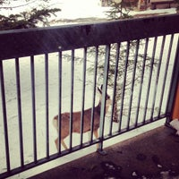 Photo taken at Douglas Fir Resort & Chalets by Oleg G. on 1/17/2013